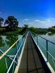 The bridge to..